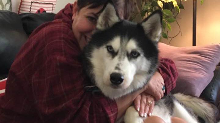 """Chú chó ngửi được """"mùi"""" ung thư, 3 lần cứu sống cô chủ"""